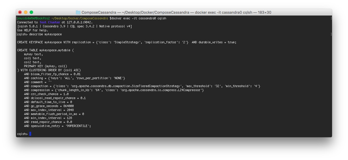 Playing with a Cassandra cluster via Docker – Manneken-Tech
